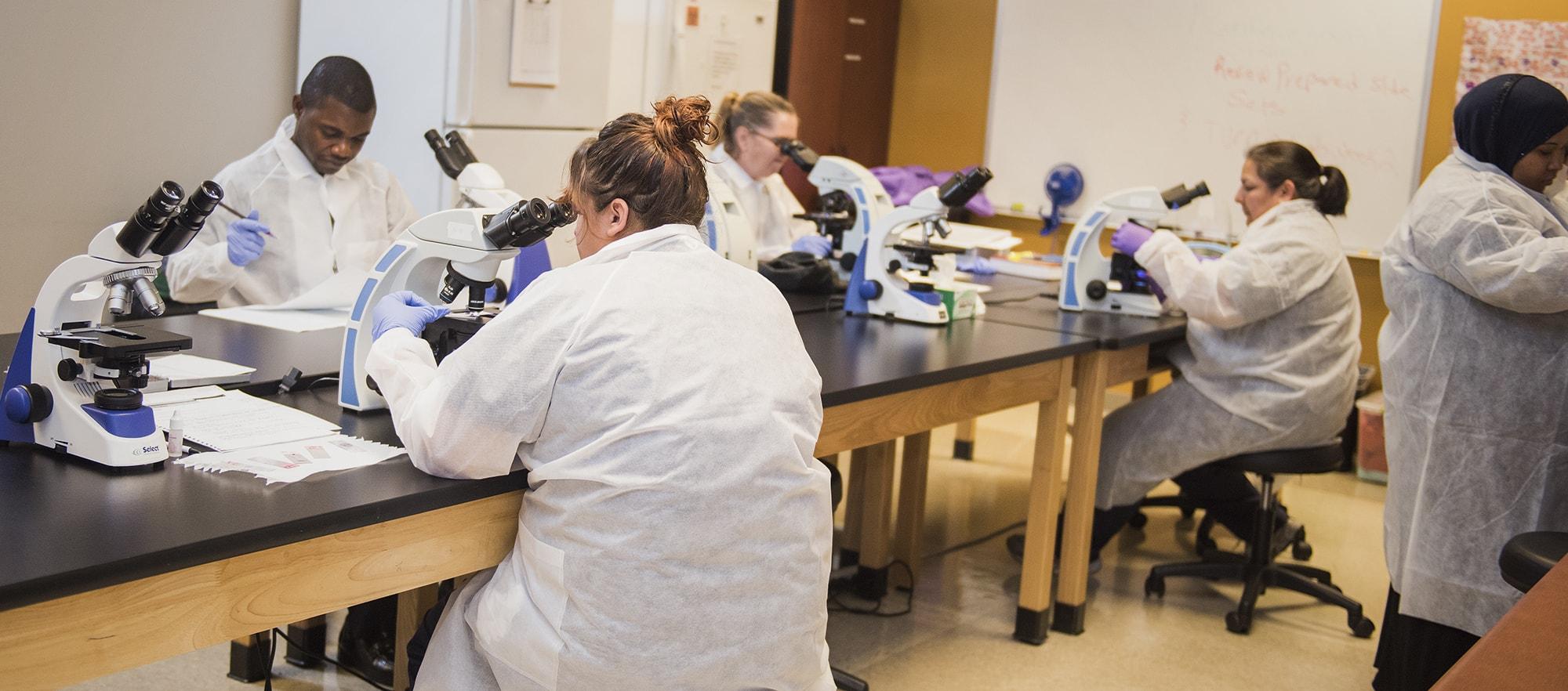 Medical Laboratory Technician Associate Of Science Brookline College
