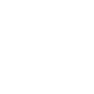 Icon of a magnifying glass and a dollar sign on paper